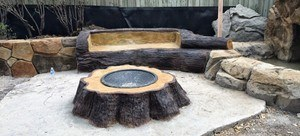 Stumped-inground Fire Pit